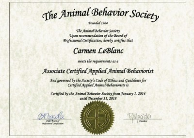 Certified animal behaviorist