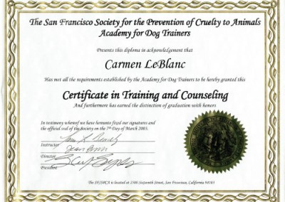 Certificate in training & counseling